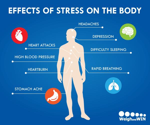 7 Stres Yönetimi Teknikleri